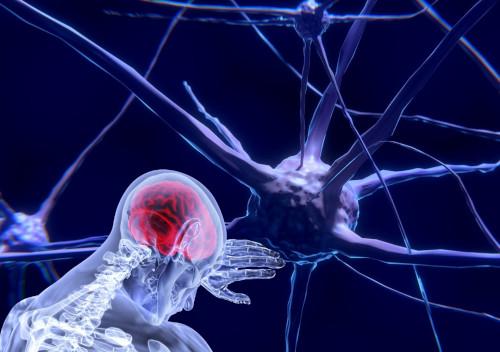neuronok illusztráció