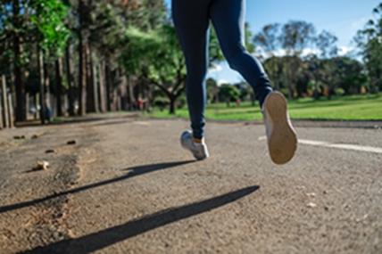 A testmozgás pozitív hatással van az agyi funkciókra - programozástanulás közben mennyit sportolsz?